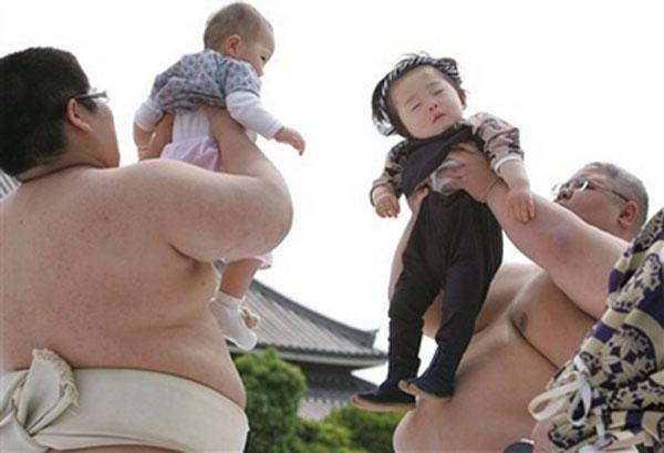 Japan Baby Sumo