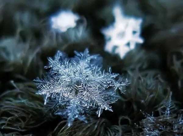 Snowflakes under the microscope